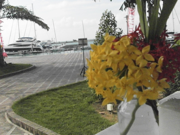 Nongsa Point - Batam Island 04